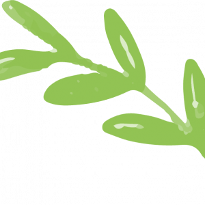 leaves-free-img.png